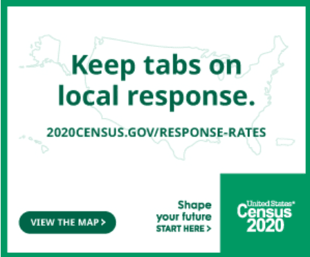2020 Census Local Response